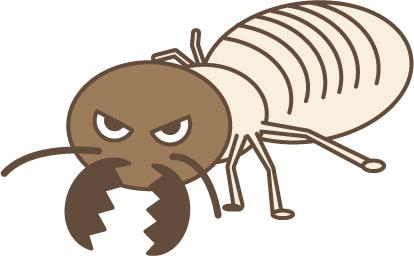 アリが冬でも活動していたら要注意!