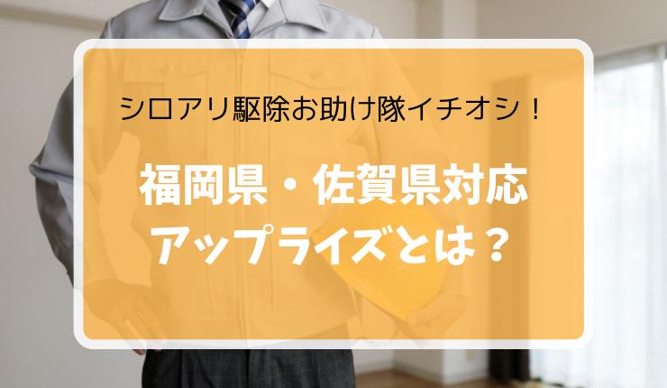 シロアリ駆除おすすめ業者【アップライズ】