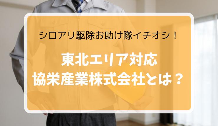シロアリ駆除おすすめ業者【協栄産業株式会社】